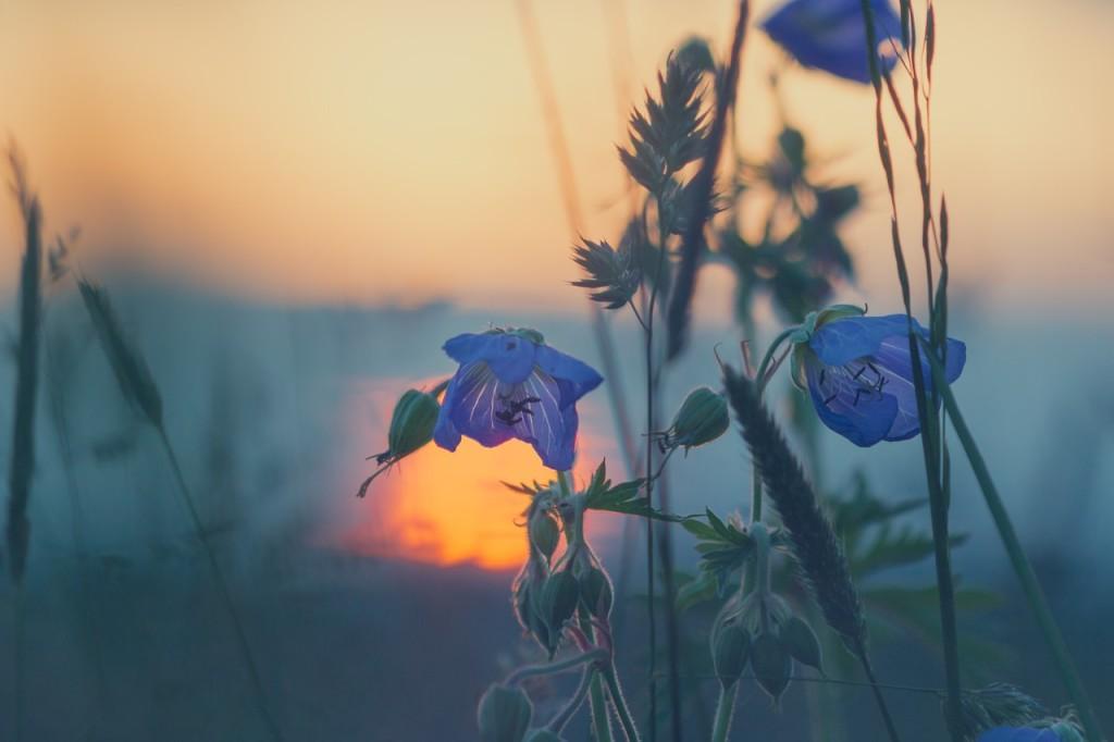 Bo w życiu piękne są tylko chwile