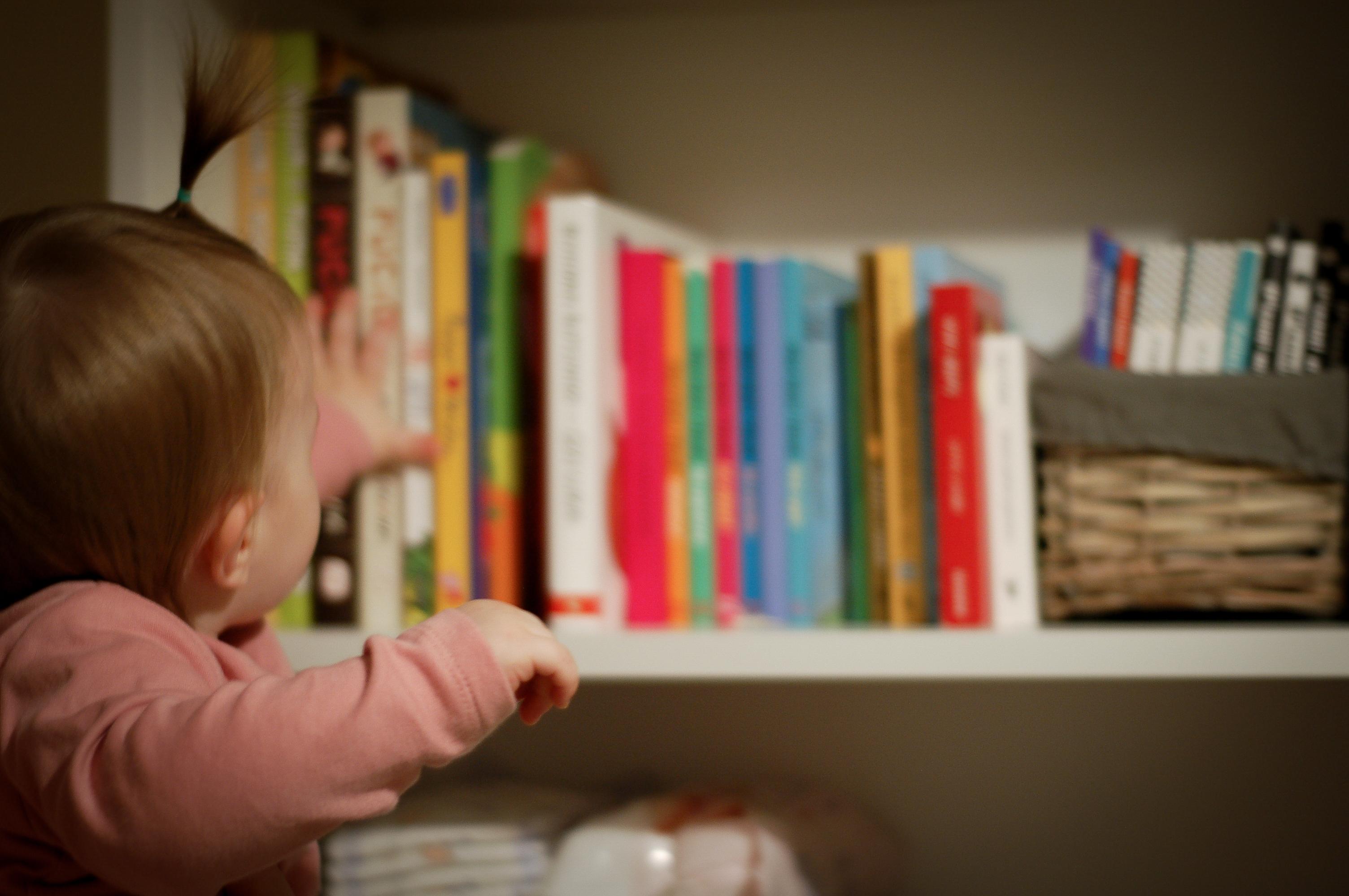 Książeczki z Lidii biblioteczki #1