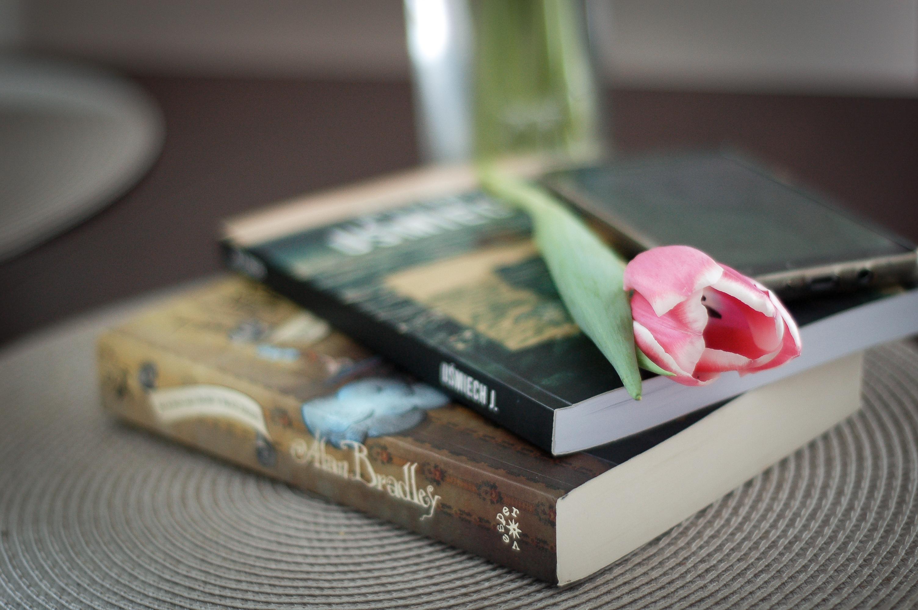 Przeczytałam – polecam #4 (książki zebrane)