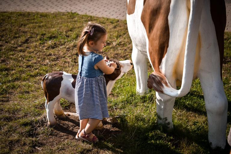 muzeum mleka w grajewie
